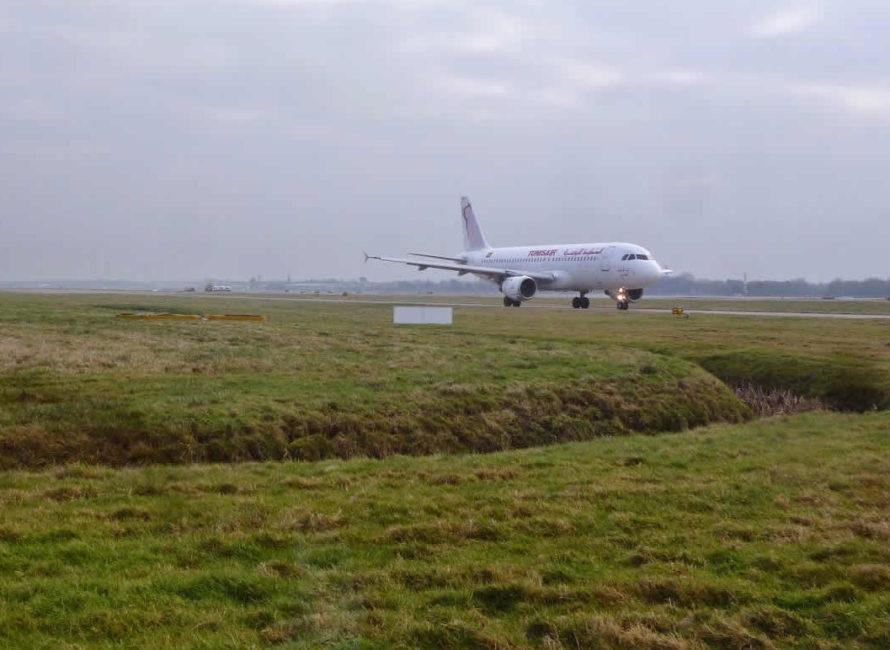 Airport habitat management